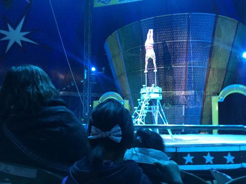 Field Trip circus:遠足での一コマ サーカス