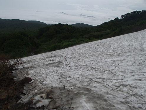焼石岳 雪渓