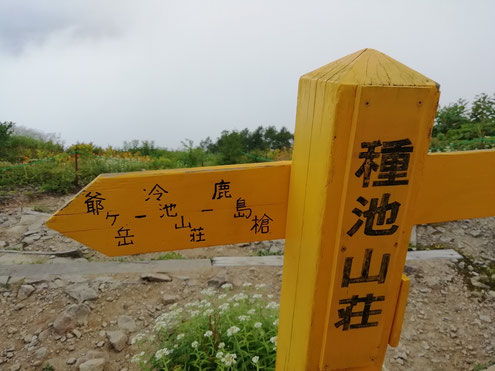 種池山荘の道標