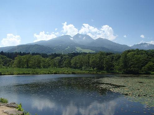 いもり池と妙高山