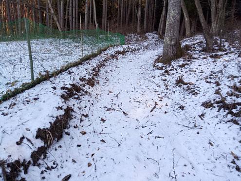 鳴雷山 雪の登山道
