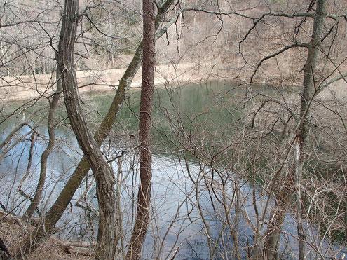 たまらずの池