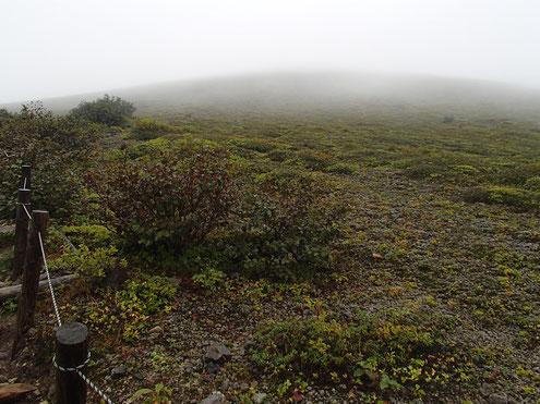 登山道から山頂方面を見る