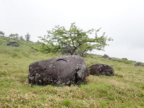 スヌーピー岩