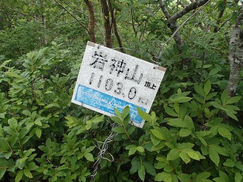 岩神山 山名板