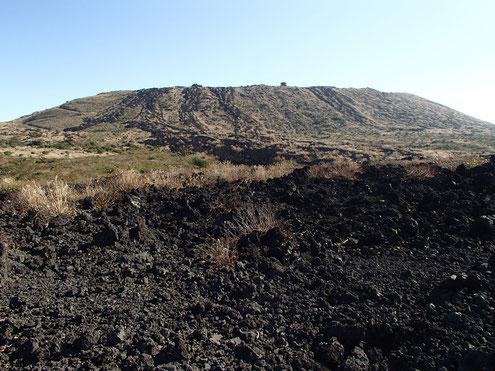 1986年溶岩流から三原山