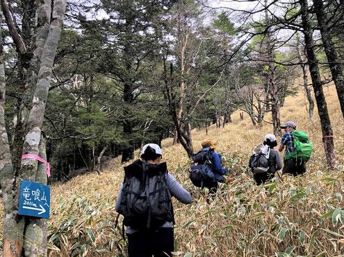 竜喰山への道