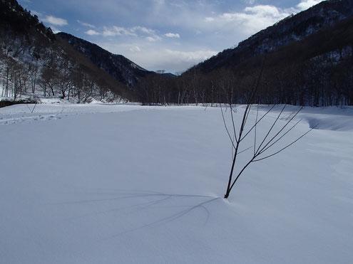 湯檜曽川の雪原