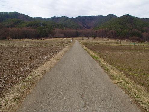 霧訪山への道