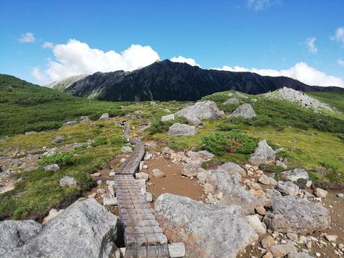 キャンプ場の分岐より水晶岳(黒岳)