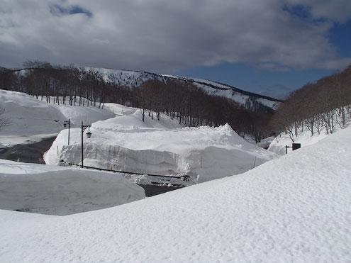 酸ヶ湯の雪の回廊