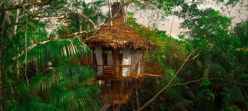 Ceiba Tops Lode bei Iquitos mit PERUline