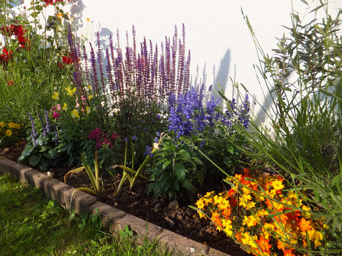 Bienenecke im Garten (Foto D. Mohr)