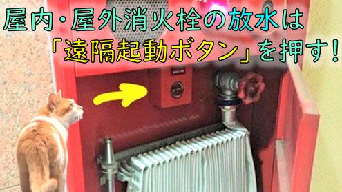 消火栓ボックスの中にある遠隔起動ボタン