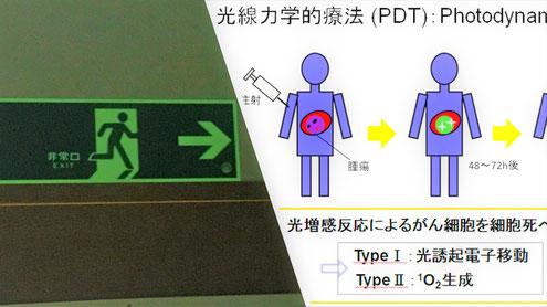 """PDTと蓄光式誘導標識のどちらも""""りん光"""""""