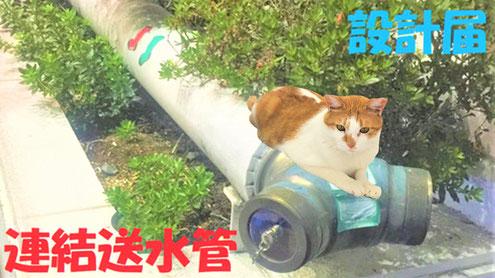 """連結送水管の""""送水口""""は身近な景色"""