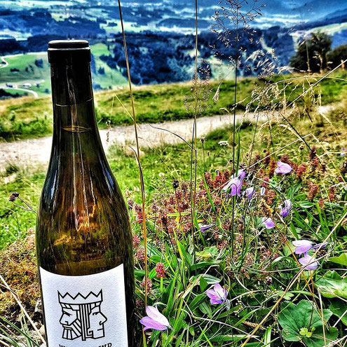 Weincrowd Wein im Allgäu