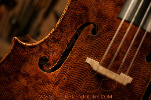 Limited Edition Antique Laubach cello model Domenico Montagnana