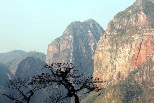 Der Nationalpark Amboro sollte mit in die Rundreise durch Bolivien