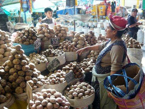 Marktbesuche in Peru und Bolivien auf der Rundreise