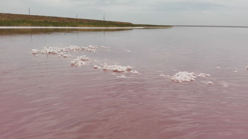 rosa Sole von ß-Carotin