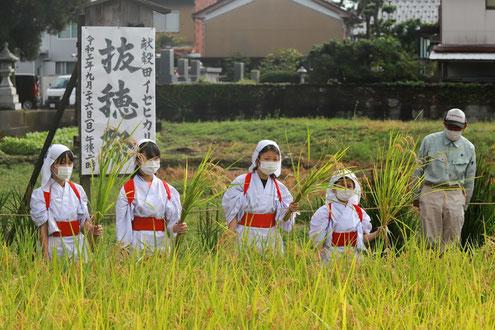 十社大神 令和3年抜穂祭 刈女たちの集合写真