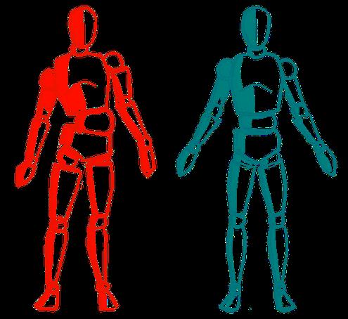 Faszien Therapie zur Verbesserung der Körperhaltung