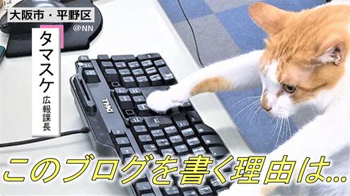 もはや弊社の顔とも言えるブログに対しても賛否両論 猫