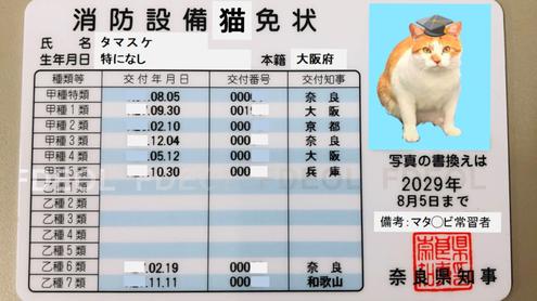 タマスケ広報課長の消防設備猫免状