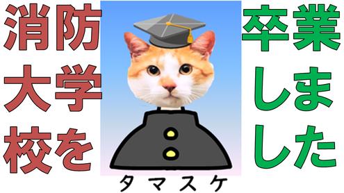 タマスケ広報課長(4)の卒業アルバム写真