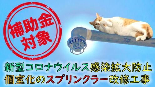 """福祉施設における """"個室化"""" で感染拡大防止‥ コロナ"""