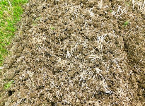 耕転後の土壌