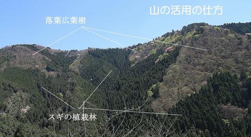 山の活用の仕方