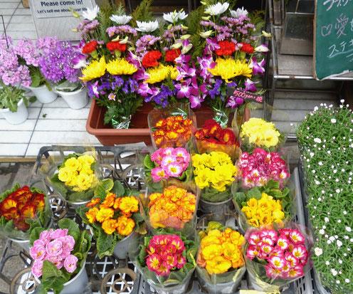 お花屋さんの店頭はもう花盛り-春間近!(みのおガーデンさん)