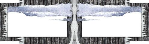 Porte gelée