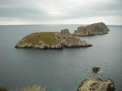 Ille de Malgrats en Ille de los Conejos, habitat van Podarcis lilfordi hartmanni