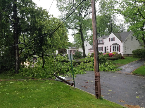 Beech Ave - A large tree was felled by high winds, snapping a telephone pole and bringing down power lines and a transformer.