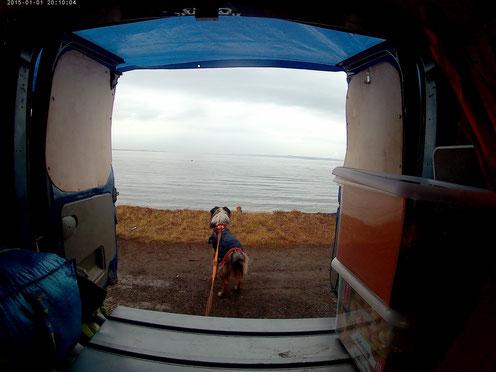 road trip en écosse, point de vue, nuit vue sur la mer du nord, chien voyager avec son chien