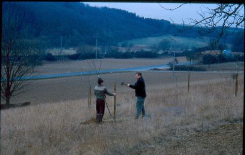 Pflanzaktion 1990