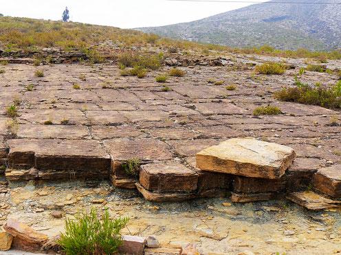 Unter jedem Stein könnte eine Sensation lauern, Toro Toro, Bolivien (Foto Jörg Schwarz)
