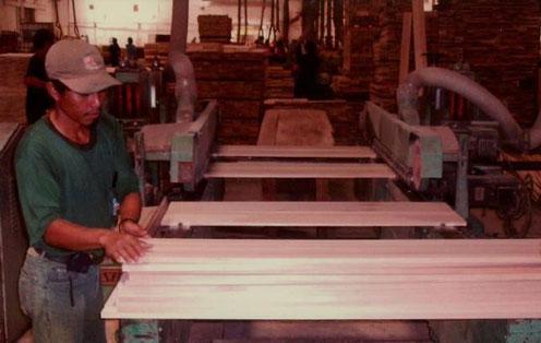 インドネシアの提携工場で加工されているアガチス