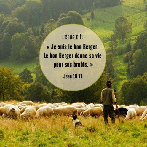 Jésus est le bon berger qui donne sa vie pour ses brebis. Jésus est la Porte des brebis, il est le Rédempteur, le Libérateur, le Christ, le Messie, le Sauveur de l'humanité, le chemin qui mène à la vie éternelle, l'Agneau de Dieu, le pain de la vie.