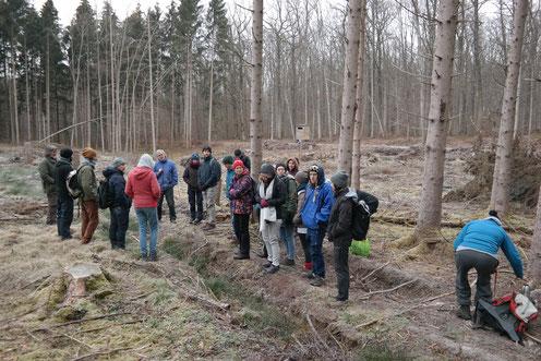 Studenten der Uni Hohenheim schauen sich während einer Exkursion eine Windwurffläche an, welche in 2018 exzellente Bedingungen für eine erfolgreiche Reproduktion der Gelbbauchunke lieferten.