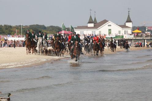 Usedom Cross Country, Ahlbeck, Seebrücke, Reiter, Pferde, Schleppjagd, Schauschleppe, Reiten gegen den Hunger