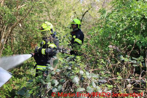 Feuerwehr; Blaulicht; BFKDO Jennersdorf; FF Rudersdorf-Ort; Brand; Hecke;