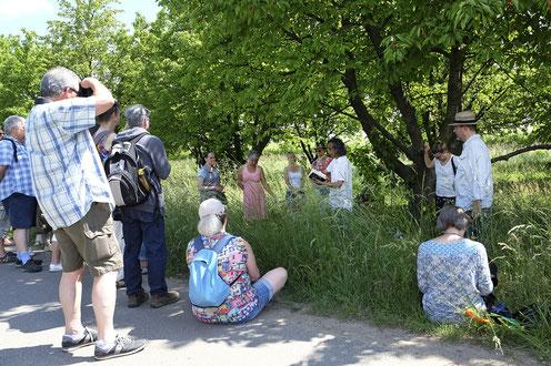 Poetishce Idyllen erwarten die Besucher bei den literarischen Spaziergängen durch Freinsheim und die umgebende Landschaft.