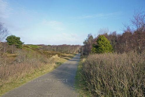 Dünenweg an der Hermann Lietz Schule