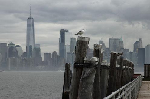 Die Skyline von New York von Liberty Island aus