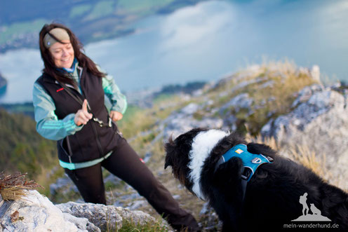 Ausflugsziele mit Hund mein wanderhund