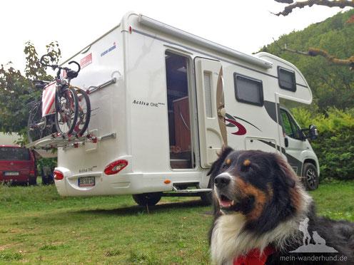 Wohnmobil mit Hund mein wanderhund